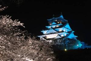 大阪城 夜桜ライトアップ