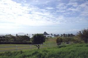 クアロアランチの乗馬中にカネオヘ湾を眺める