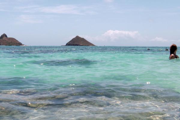 ラニカイビーチの写真。水の透明度は抜群です。