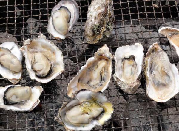 牡蠣食べ放題(牡蠣小屋 島田水産)