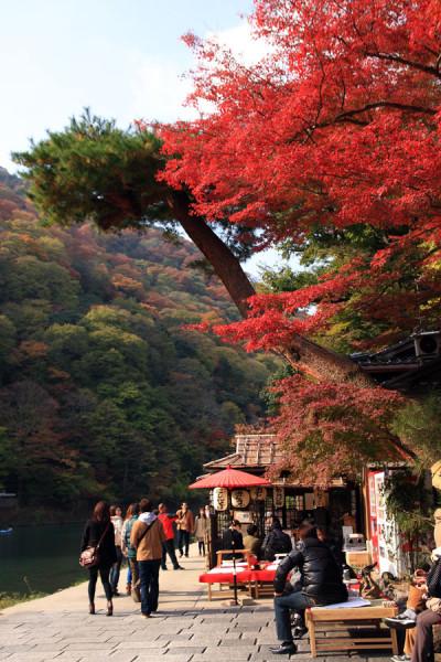 保津川の川岸で真っ赤に染まる紅葉を見ながら人休み。花より団子派には嬉しいですね。