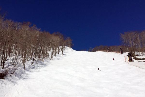 コース:シルキーウェイ(中級者)。久しぶりのスキーだったのでこの急斜面は怖くて滑りませんでした。