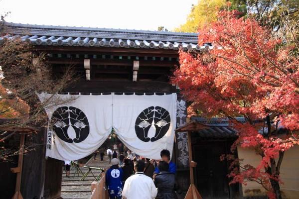 京都 光明寺の紅葉 少し時間が遅かったけど、大混雑ではなかったです
