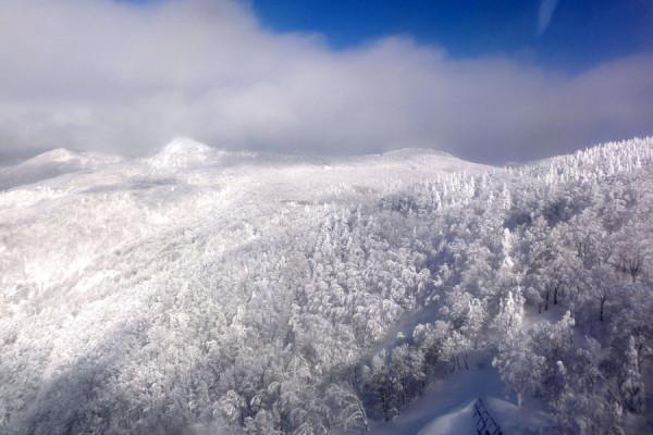 ロープウェイから眺める白銀の樹氷原は最高に美しい
