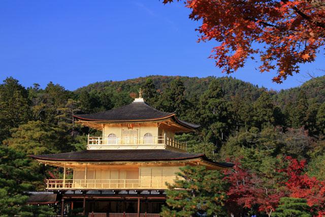 金閣寺の紅葉 Kinkaku
