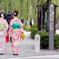 京都の着物散歩どこに行けばいい?おすすめの観光スポットと着物レンタル店