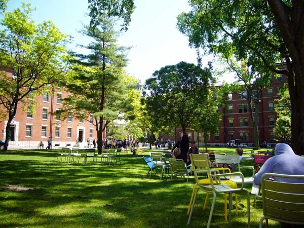 ハーバード大学 キャンパス